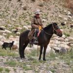 Gardien de troupeau de chèvres